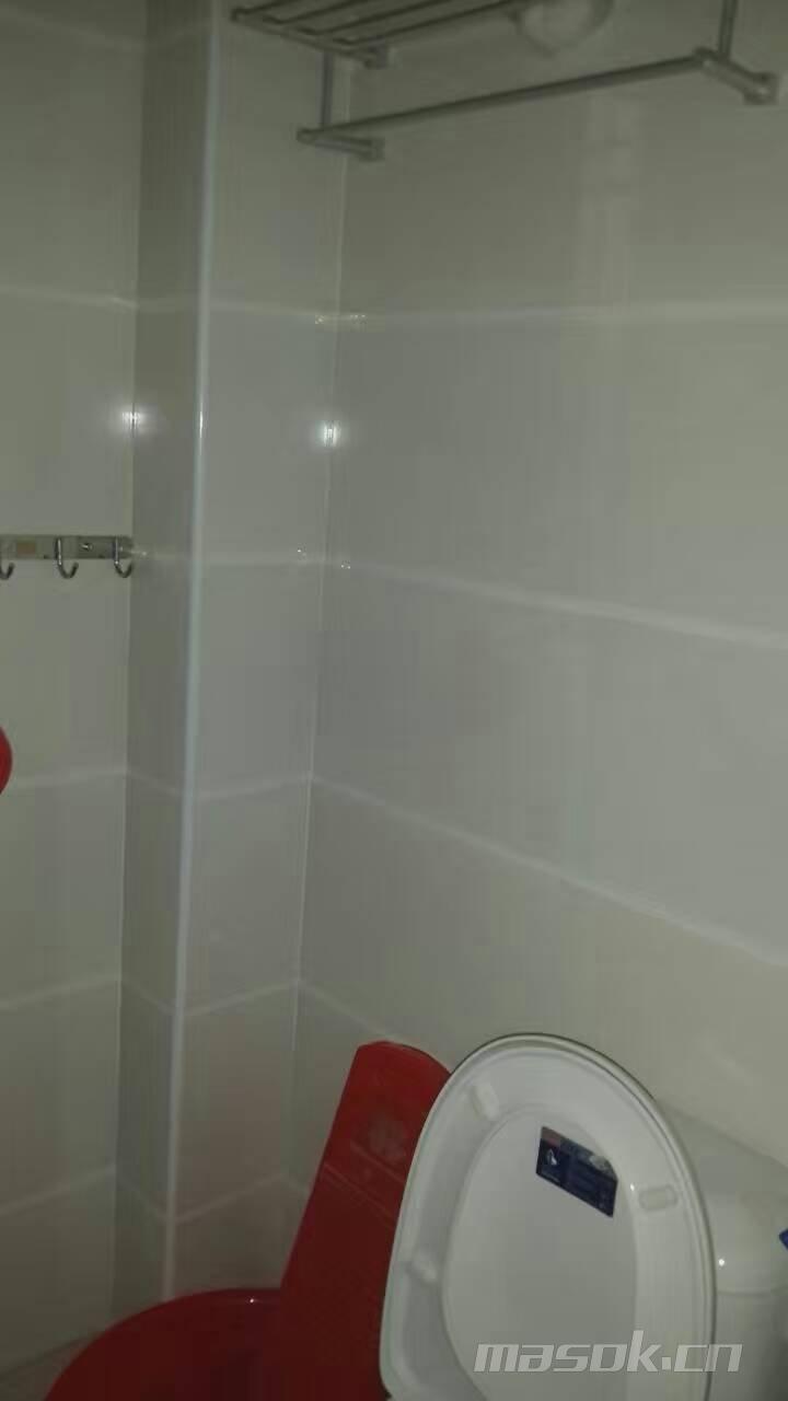 东方明珠旁边新房精装修仅租800元实拍图片 房源信息高清图片